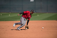 Arizona Diamondbacks shortstop Domingo Leyba (4) takes infield practice during Spring Training Camp at Salt River Fields at Talking Stick on March 12, 2018 in Scottsdale, Arizona. (Zachary Lucy/Four Seam Images)