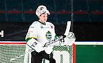 Stockholm 2014-11-16 Ishockey Hockeyallsvenskan AIK - IF Bj&ouml;rkl&ouml;ven :  <br /> Bj&ouml;rkl&ouml;vens m&aring;lvakt Johan Mattsson under matchen mellan AIK och IF Bj&ouml;rkl&ouml;ven <br /> (Foto: Kenta J&ouml;nsson) Nyckelord:  AIK Gnaget Hockeyallsvenskan Allsvenskan Hovet Johanneshov Isstadion Bj&ouml;rkl&ouml;ven L&ouml;ven IFB portr&auml;tt portrait