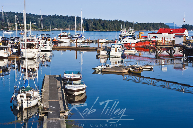 Canada, BC, Gulf Islands, Salt Spring Island, Ganges Harbor