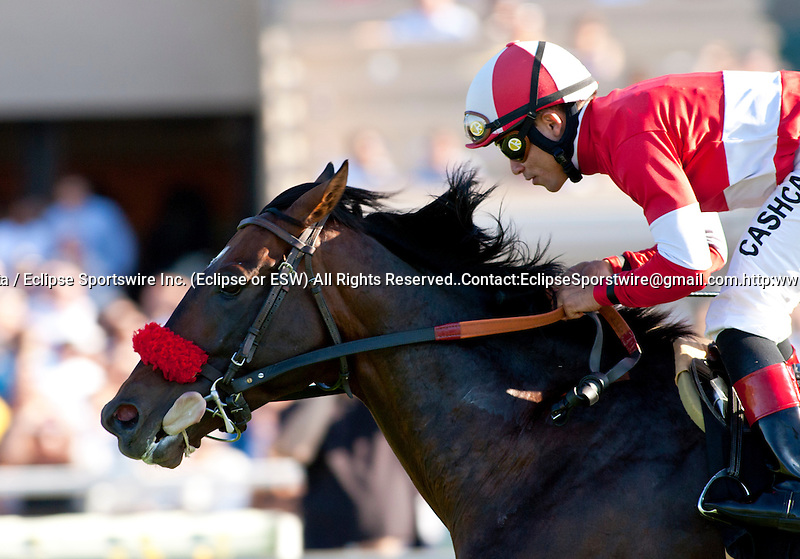Acclamation and Joel Rosario win th Eddie Read Stakes(GI) at Del Mar Thoroughbred Club in Del Mar, CA.  July 20, 2011