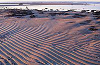 Sandriffelwatt, Sand-Riffelwatt, Sand-Riffel-Watt, Wattfläche, Sandwatt, Ebbe, Niedrigwasser