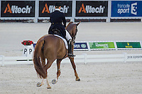 GER-Isabell Werth (BELLA ROSE 2) FINAL-2ND: GRAND PRIX TEAM COMPETITION: The Alltech FEI World Equestrian Games 2014 In Normandy - France (Tuesday 26 August) CREDIT: Libby Law COPYRIGHT: LIBBY LAW PHOTOGRAPHY - NZL