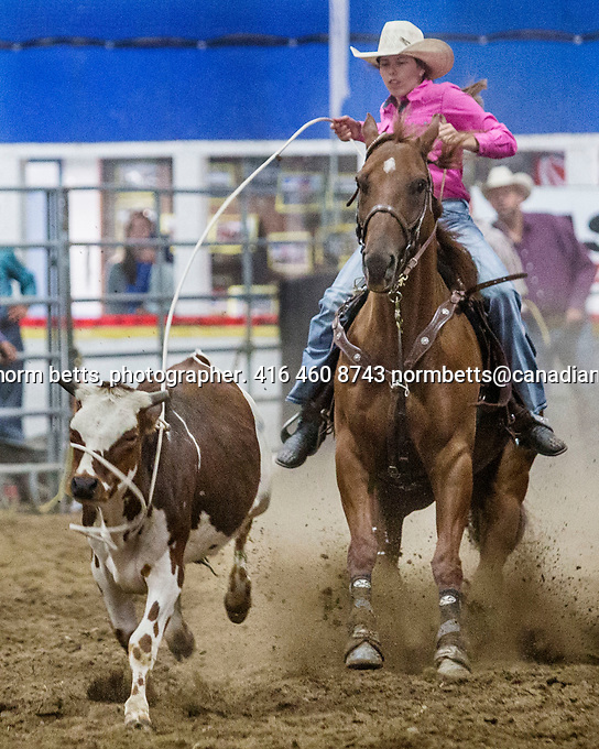 New Tecumseth- Mayor's Charity Rodeo in Alliston, Ontario, Canada, Saturday and Sunday Sept 9th and 10th<br />