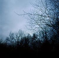 Morning light begins during a hunting trip in Superior, Nebraska, Thursday, December 1, 2011...Photo by Matt Nager