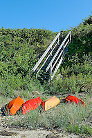 Kayaks on private beach, Cape Cod, MA, Cape Cod, Massachusetts, USA