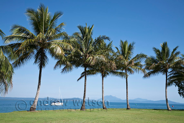 Yacht heading out to sea viewed from Rex Smeal Park.  Port Douglas, Queensland, Australia