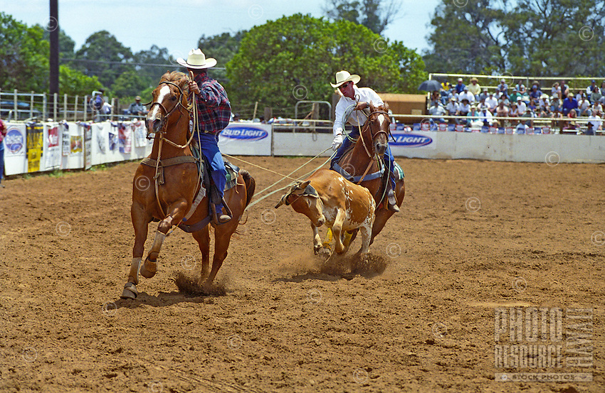 Two men participate in the annual Fourth of July Makawao Rodeo. Hawaii's largest rodeo, it is held in the upcountry town of Makawao. Maui's cowboy or paniolo town got its start in the early 1800s as a support community for the upcountry cattle ranches.