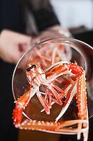 Europe/France/Bretagne/29/Finistère/Carantec: Présentation des Langoustine de casier<br /> Restaurant: Patrick Jeffroy - Hôtel de Carantec