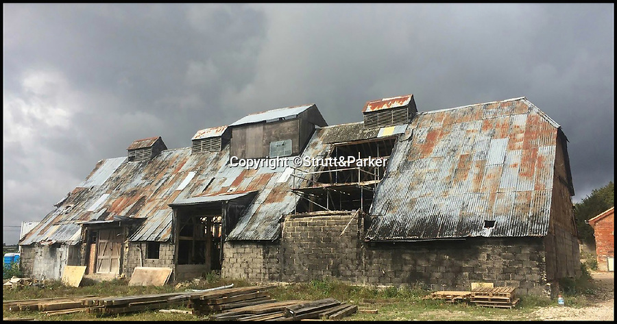 BNPS.co.uk (01202 558833)<br /> Pic: Strutt&Parker/BNPS<br /> <br /> The dilapidated threshing barn in Greywell in Hampshire before its transformation into a open plan modern home.<br /> <br /> These stark before and after pictures show the remarkable transformation of a dilapidated barn into a luxurious home worth £1.25million. <br /> <br /> The ramshackle 16th century structure on a derelict farm was in a state of near ruin before developer Mark Parmenter undertook the colossal project - his first ever barn conversion. <br /> <br /> Mr Parmenter, 60, identified the magnificent 400-year-old beams as the centrepiece of his project. <br /> <br /> Despite the decrepit exterior, which pictures show to have been rusty and crumbling, he was pleasantly surprised to find the inside in remarkably good condition. <br /> <br /> The property is now on the market with Strutt & Parker.