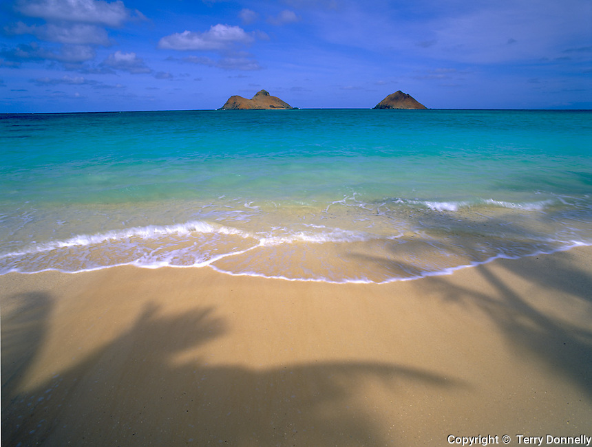 Oahu, HI                    <br /> Palm tree shadows on Lanikai Beach with the <br /> Moku Lua Islands in turquoise waters of <br /> Ohau's Windward Coast