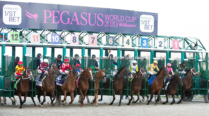 January 25, 2020:  #2 Tax with jockey Jose Ortiz on board, stumbles out of the gate, the Pegasus World Cup Invitational at Gulfstream Park Race Track in Hallandale Beach, Florida. Liz Lamont/Eclipse Sportswire/CSM
