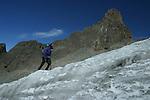 Glacier Lewis et pointe Thompson. Alors que ce glaciers s etendaient sur plusieurs dizaines de km2, il y a quelques milliers d'annees, il est  reduit aujourdhui a moins de 0,4 km2 et pourrait disparatre dici 2020..Kenya Mont Kenya