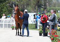 LEXINGTON, KY - April 26, 2017. #36 Fernhill Fugitive and Phillip Dutton from the USA at the Rolex Three Day Event First Horse Inspection at the Kentucky Horse Park.  Lexington, Kentucky. (Photo by Candice Chavez/Eclipse Sportswire/Getty Images)