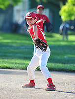 PNLL AA Cardinals action 2015. (Photo by AGP Photography)