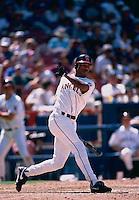 Garret Anderson of the California Angels during a 1995 season game at Anaheim Stadium in Anaheim,California.(Larry Goren/Four Seam Images)
