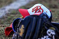 Aspectos previos, durante partido3 de beisbol entre Naranjeros de Hermosillo vs Mayos de Navojoa. Temporada 2016 2017 de la Liga Mexicana del Pacifico.<br /> © Foto: LuisGutierrez/NORTEPHOTO.COM