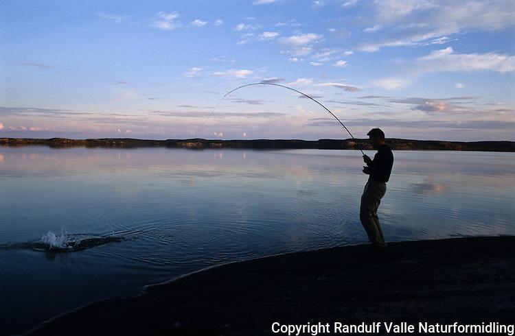 Mann kjører gjedde på flue i Coppermine River. ---- Man figthing pike on fly rod in Coppermine River.