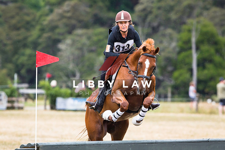 NZL-Ashra McAvinue (WANDERLUST) 3A NZPC 80: 2015 NZL-Hunua Pony Club ODE (Sunday 1 February) CREDIT: Libby Law COPYRIGHT: LIBBY LAW PHOTOGRAPHY