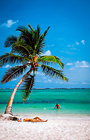 Dominikanische Republik, Punta Cana, Bavaro Beach: Paar am Strand, Frau liegt im Sand, topless, Mann im Wasser, einzelne Palme | Dominican Republic, Punta Cana, Bavaro Beach: single palm tree, couple at secluded beach, woman topless sunbathing, man  in the water