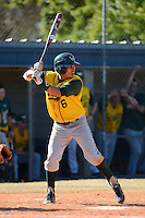 Wayne State Warriors infielder Justin Sherman #6 during a game against Slippery Rock at Chain of Lakes Stadium on March 15, 2013 in Winter Haven, Florida.  Illinois State defeated Long Island 6-4.  (Mike Janes/Four Seam Images)