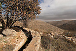Judea, Hebron Mountain. The ancient water system in Wadi Biar
