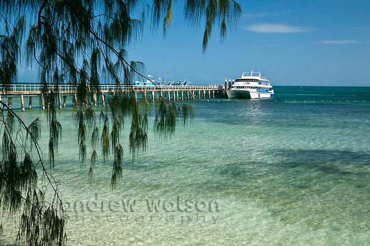 Tourist boat at jetty.  Green Island, Great Barrier Reef Marine Park, Queensland, Australia