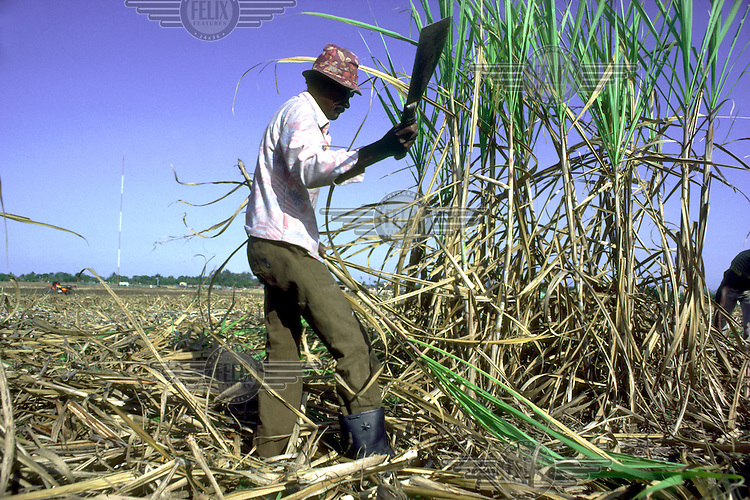 DOMINICAN REPUBLIC.A Haitian canecutter working on a sugar plantation in La Romana