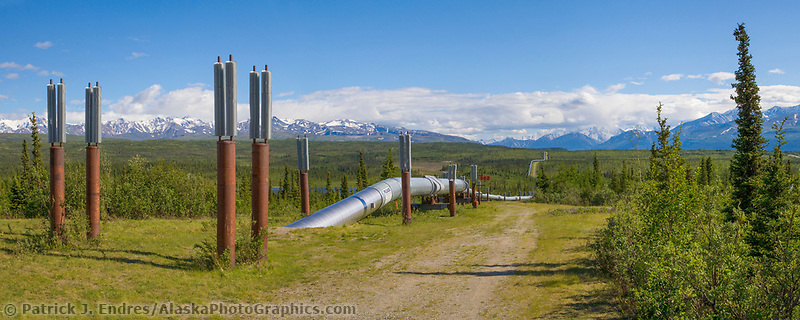 Panorama of the Trans Alaska oil pipeline traversing the tundra south of Delta Junction, Alaska.