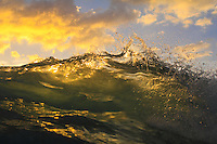 A wave lit by sunset at Makua Beach, Waianae, O'ahu.
