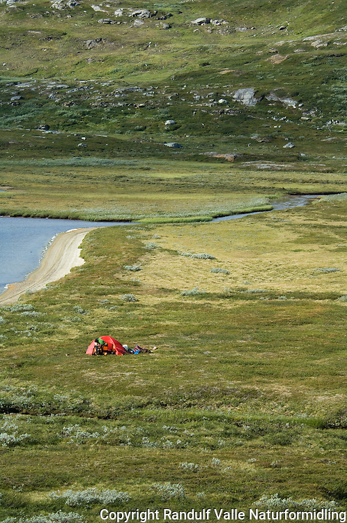 Teltleir på Saltfjellet ---- Camp site