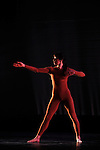 For M.G.: The Movie (1991)<br /> <br /> Chor&eacute;graphie, sc&eacute;nographie et costumes : Trisha Brown<br /> Musique : Alvin Curran<br /> Lumi&egrave;re : Spencer Brown<br /> Lieu : Th&eacute;&acirc;tre de la Ville<br /> Ville : Paris<br /> Date : le 22/10/2013<br /> &copy; Laurent Paillier / photosdedanse.com