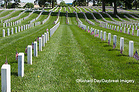 65095-01702 Flags on Memorial Day at Jefferson Barracks National Cemetery, St Louis, MO