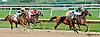 DC Royale Tigre winning at Delaware Park on 10/3/13