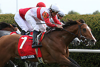 Data Link and Alex Solis win the Grade 1 Maker's 46 Mile at Keeneland Racecourse.  April 13, 2012.