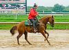 Lance at Delaware Park on 9/3/12