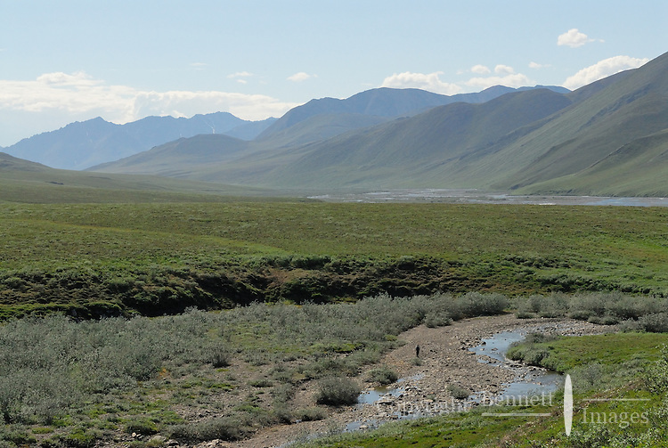 A lone hiker gives scale to the Cariboiu Pass area along the Kongakut River, in Alaska's Arctic National Wildlife Refuge.