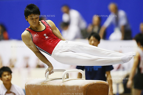 Wataru Tanigawa (Funabashi),<br /> August 2, 2014 - Artistic Gymnastics : <br /> 2014 All-Japan Inter High School Championships, <br /> Men's Artistic Gymnastics Preliminary<br /> at Yoyogi 1st Gymnasium, Tokyo, Japan. <br /> (Photo by Shingo Ito/AFLO SPORT) [1195]
