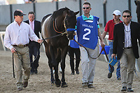 HOT SPRINGS, AR - March 18: Mor Spirit #2 is walked to the paddock prior to the Essex Handicap at Oaklawn Park on March 18, 2017 in Hot Springs, AR. (Photo by Ciara Bowen/Eclipse Sportswire/Getty Images)