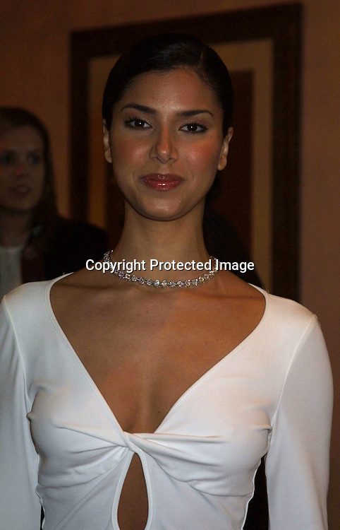 ©2003 KATHY HUTCHINS / HUTCHINS PHOTO.Wed, Jan 15, 2003.INSTYLE RED CARPET PREVIEW EVENT.BEVERLY HILLS HOTEL.BEVERLY HILLS, CA.ROSELYN SANCHEZ