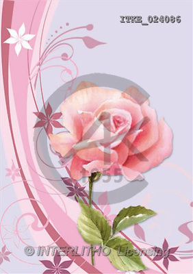 Isabella, FLOWERS, paintings(ITKE024086,#F#) Blumen, flores, illustrations, pinturas ,everyday
