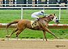 Hughes Next winning at Delaware Park on 8/23/14