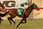 DEL MAR, CA  SEP 7: #5 Big Fish, ridden by Victor Espinoza, wins the Del Mar Juvenile Turf on September 7, 2020, at Del Mar Thoroughbred Club in Del Mar, CA.(Photo by Casey Phillips/Eclipse Sportswire/CSM.
