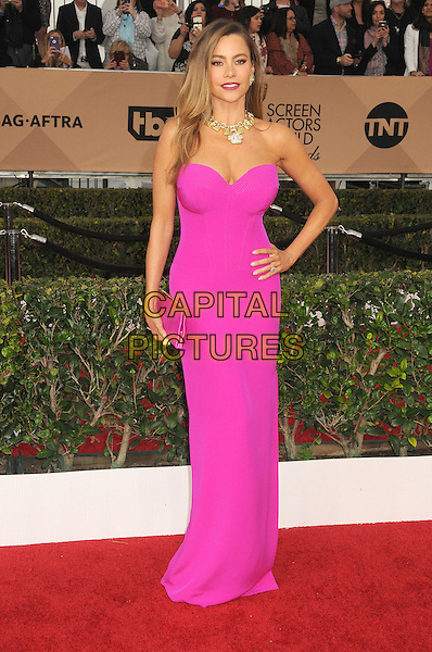 30 January 2016 - Los Angeles, California - Sofia Vergara. 22nd Annual Screen Actors Guild Awards held at The Shrine Auditorium.      <br /> CAP/ADM/BP<br /> &copy;BP/ADM/Capital Pictures