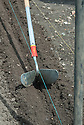 "Using a ridger to create a shallow trench for planting out or ""dibbing in"" young leek plants, mid June."