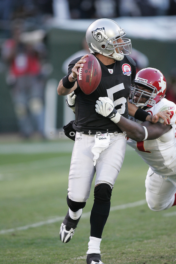 BRUCE GRADKOWSKI, of the Oakland Raiders, in action during the Raiders game against the Kansas City Chiefss on November 15, 2009 in Oakland, CA. Chiefs won 16-10.