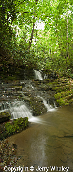 Stream & Waterfalls, Greenbrier, Great Smoky Mountains National Park, TN