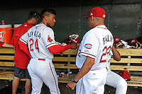 Hitting coach Nelson Paulino (22) of the Greenville Drive, right, fist bumps with second baseman Yoan Moncada (24) in a game against the Lexington Legends on Tuesday, May 19, 2015, at Fluor Field at the West End in Greenville, South Carolina. (Tom Priddy/Four Seam Images)