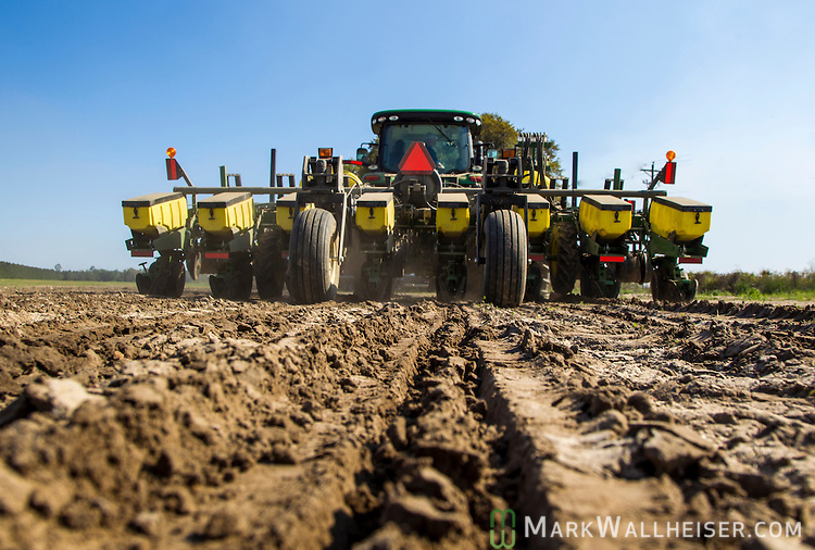 Randy Dowdy plants corn near Valdosta, Ga. April 1, 2014.