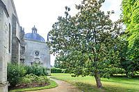 France, Indre-et-Loire (37), Azay-le-Rideau, parc et château d'Azay-le-Rideau au printemps, jardin du prieuré, église et Magnolia grandiflora