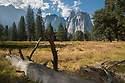 September 2014 / Yosemite National Park  / Cathedral Spires seen from South Side Drive /Yosemite National Park landscapes / Photo by Bob Laramie